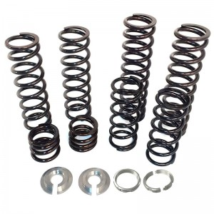 Polaris RZR XP 4 1000 And XP 4 Turbo Spring Kit For Walker Evans Needle Shocks
